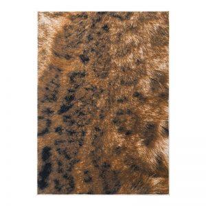 فرش طرح پوست 1500 شانه طرح فرش طرح پوست 1500 شانه طرح کارنگ